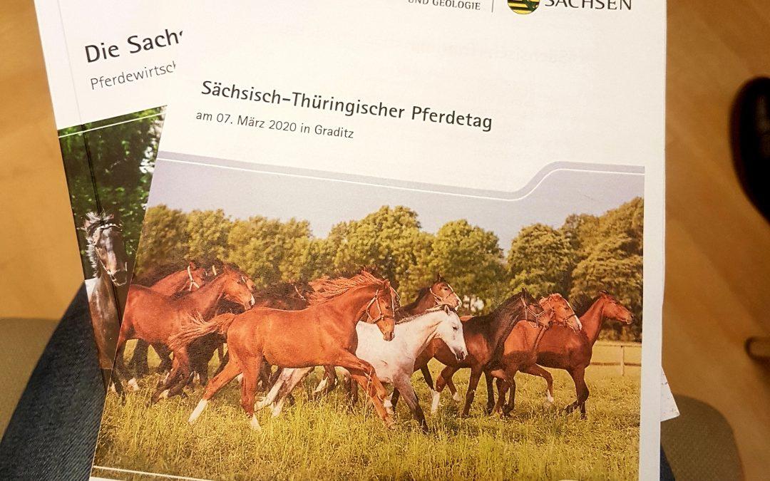 Vorstellung Projektzwischenstand beim Sächsisch-Thüringischen Pferdetag in Graditz
