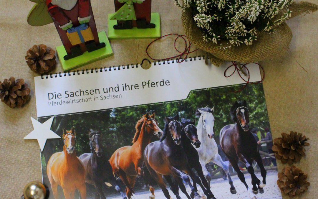 """A3-Kalender """"Die Sachsen und ihre Pferde"""" rechtzeitig vor Weihnachten verfügbar"""