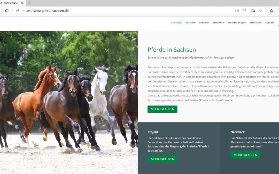 Internetauftritt der Initiative erstrahlt unter www.pferd-sachsen.de in neuem Design