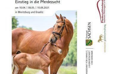 Dreiteilige Veranstaltungsreihe für Neuzüchter – Einstieg in die Pferdezucht